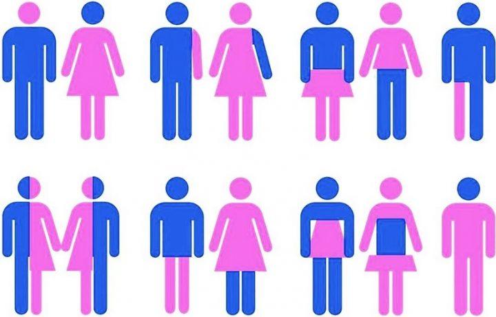 La gender theory rientra nella scuola…….