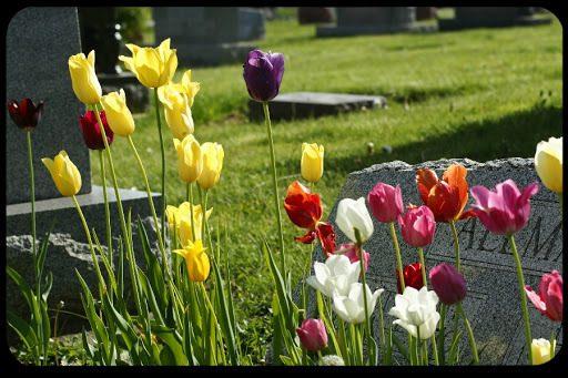 Dove si va a finire dopo la morte?